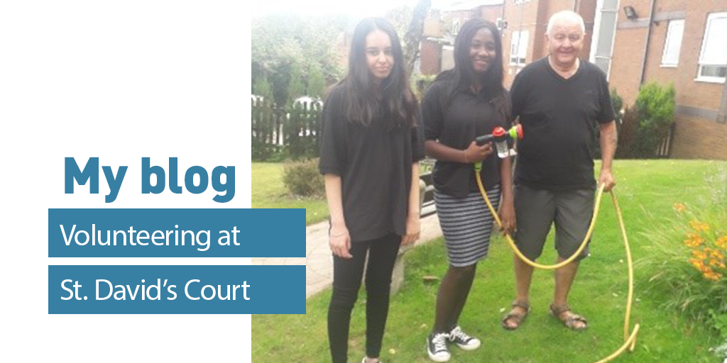 My blog - St David's Court - Ria and Vanakay